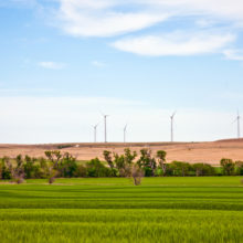 wind farm open landscape row of turbines